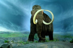 woolly_mammoth-300x199.jpg