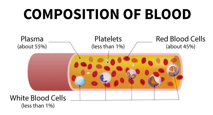 Should You Be Donating Platelets? — Stanford Blood Center