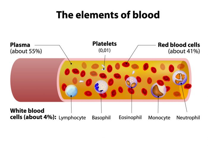 Elements of Blood