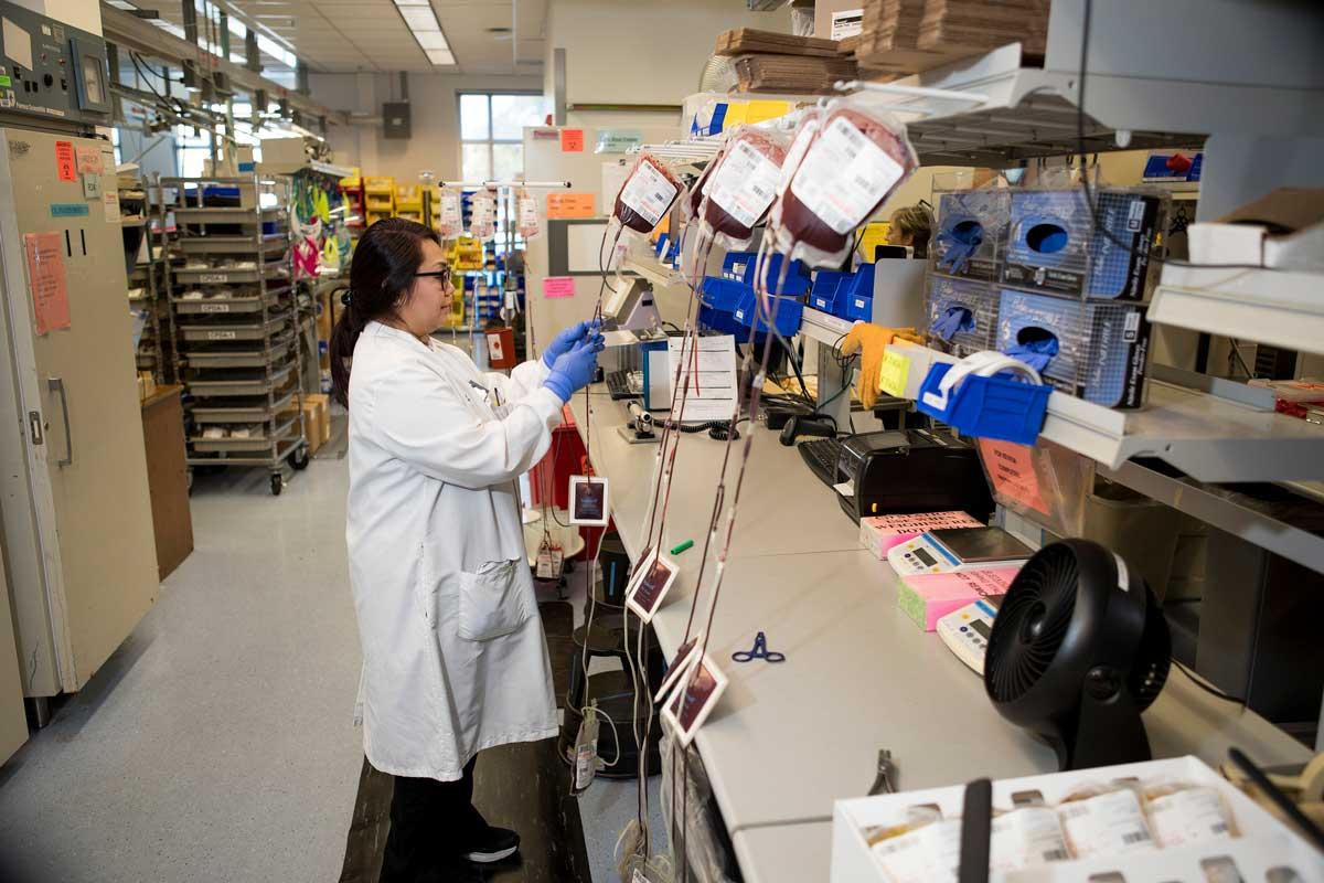 SBC Lab