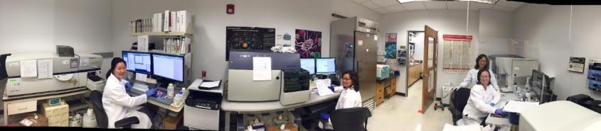flow-lab