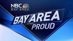 Bay Area Proud logo