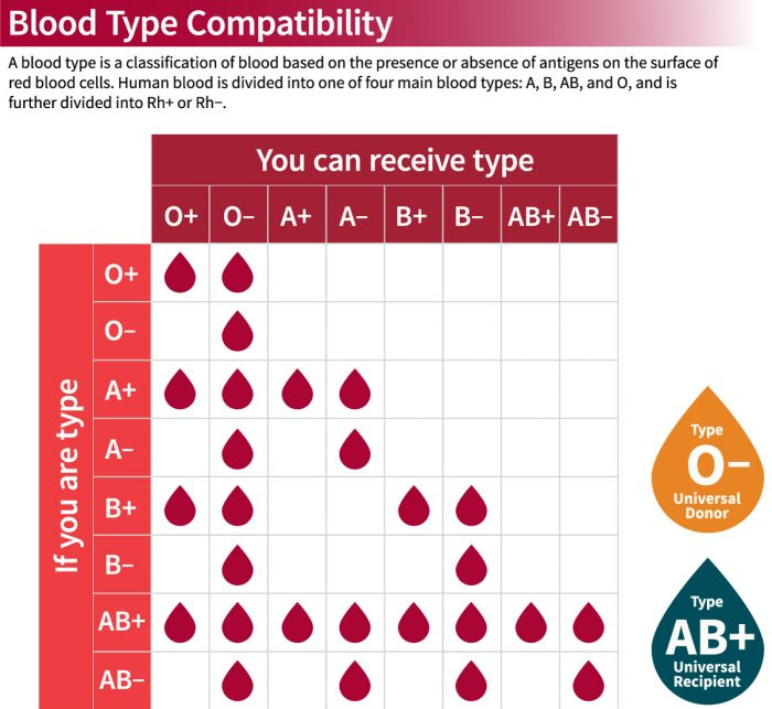 Blood Type Compatibility