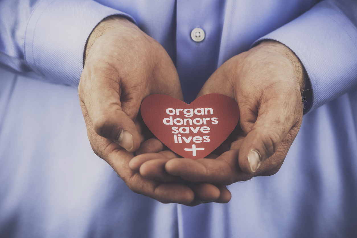 person holding heart in hands that says organ donors save lives